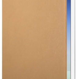 Twelve South SurfacePad (iPad Air/2) - Beige