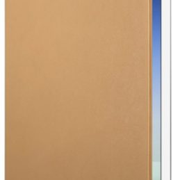 Twelve South Surfacepad (iPad mini 4) - Brun